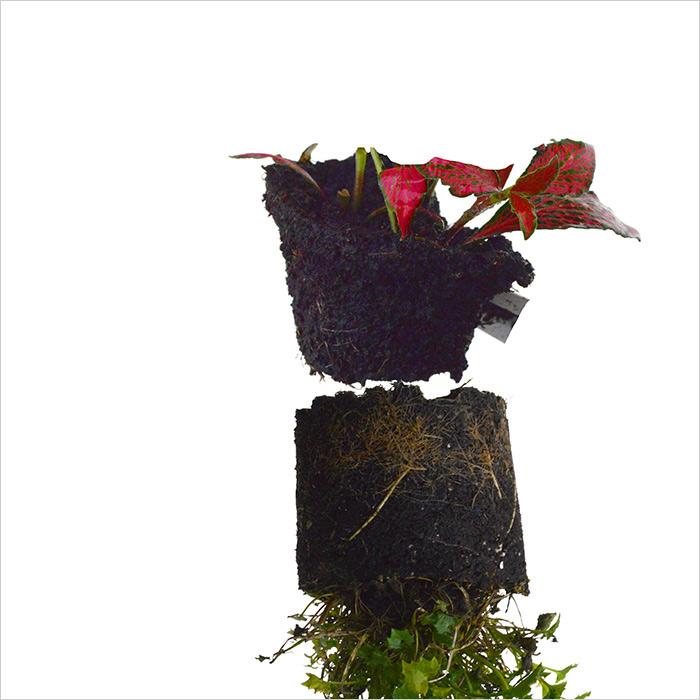RE-flower 7 (no. 14), Jan Skovgård