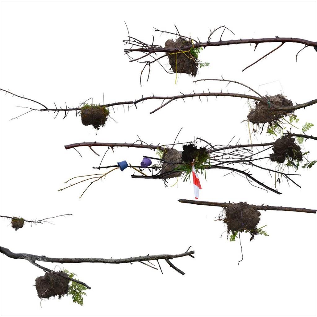 RE-flower V (no. 5), 2014