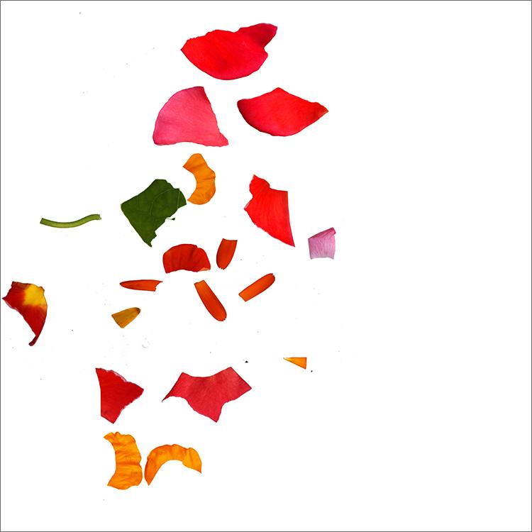 RE-flower (d20) - Jan Skovgård